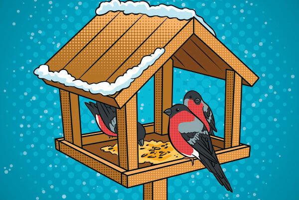 wood projects bird feeder in-school field trip icon
